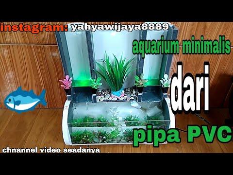 Minimalist Aquarium From Pvc Pipe