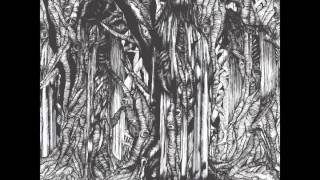Sunn O))) - It Took The Night To Believe thumbnail