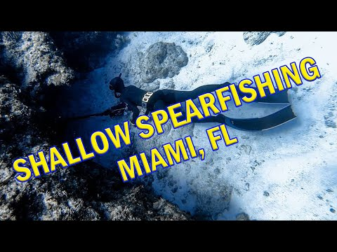 Lauren Freediving Spearfishing In South Florida 2019
