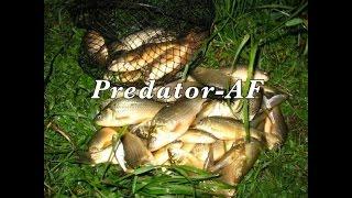 Рыбалка Электронная приманка для рыбы ( Predator-AF ).