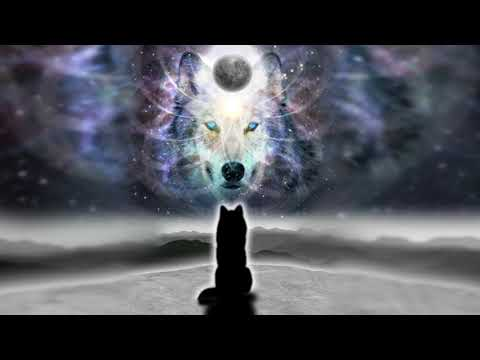 Journey of the Wolf - Guided Story Meditation