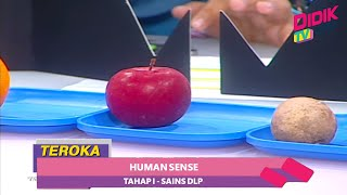 Teroka (2021)   Tahap 1 : Sains DLP : Human Sense