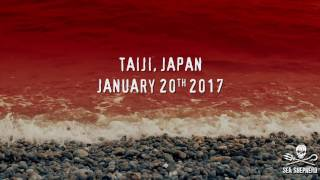 Taiji, Japan - Dolphins for Cash