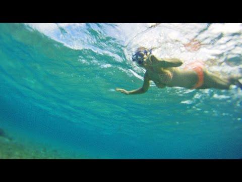 Maui • SNORKELING With Sea Turtles