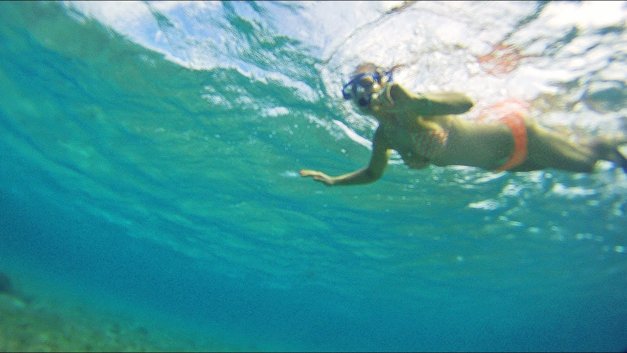 Maui snorkeling with sea turtles youtube for Free fishing spots near me