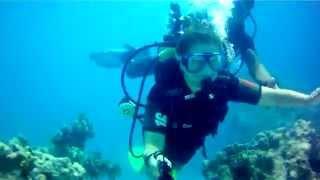 Home video 4  Дайвинг в Египте(, 2015-07-07T21:22:36.000Z)
