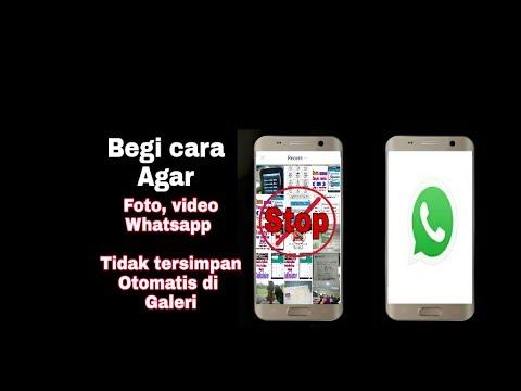 Cara Agar Foto Video Whatsapp Tidak Tersimpan Otomatis Di Galeri Youtube