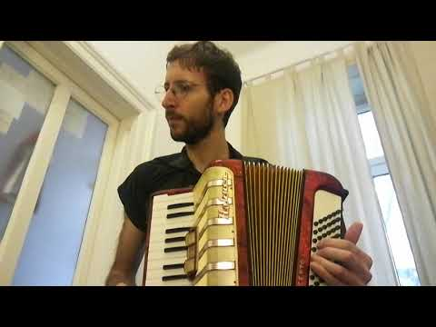 Everybody Needs Somebody (Blues Brothers) Accordion Cover