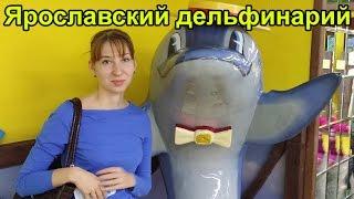 VLOG: Ярославль, Музей истории, Дельфинарий(В этом видео я посетила музей истории города Ярославль, а так же знаменитый ярославский дельфинарий., 2015-12-09T17:00:01.000Z)