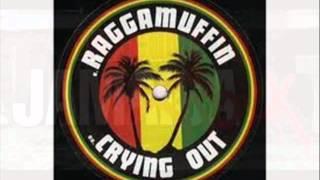reggae to jamrock (Dj Selecthor)
