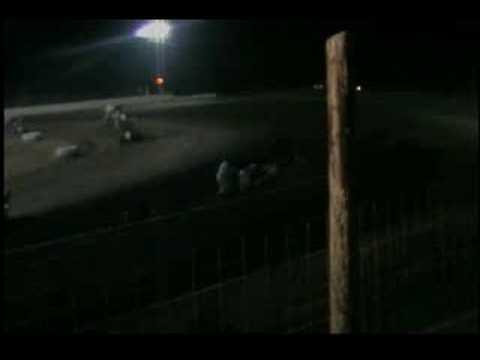 Wilmot Speedway Crash