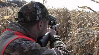 Michigan Hunting/Gun Season 2011