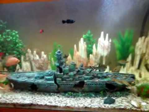 Nice Aquarium 330 litres