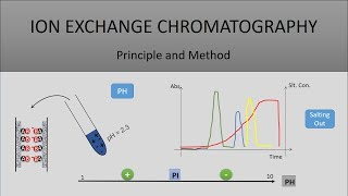 The Principle Of Ion Exchange Chromatography, A Full Explanation