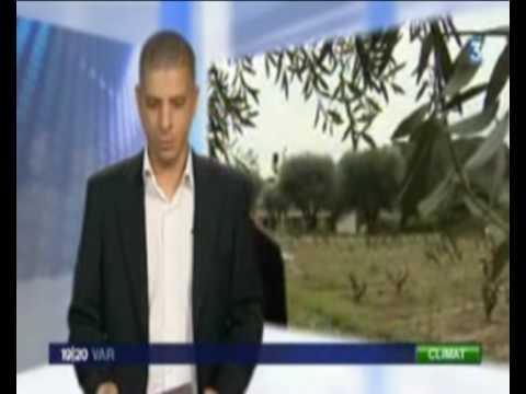 Reportage France 3 Toulon JT du 26 janvier 2010: station météo de Sanary