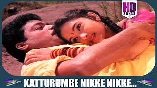 Malayalam movie Junior Mandrake Part   Romantic song 'Ellarum Pokunju..'