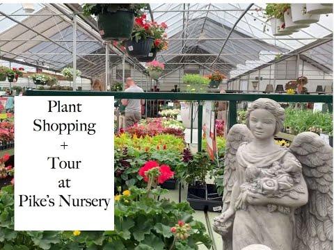 June 2019 Plant Shopping//Pikes Nursery Tour//Plant Haul