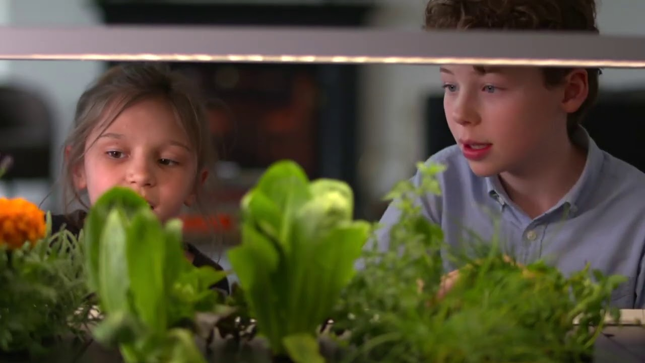 Growing Your Own Food Indoors - BBC Click