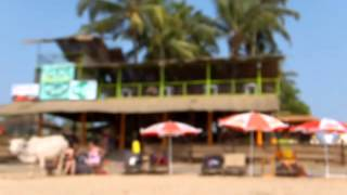 hippies bar , anjuna beach , goa , india, wifi , beer , cocktails,  house music , electronic