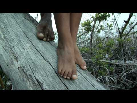 Alamar Film Trailer