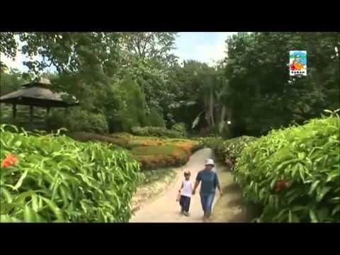 Sabah tourism video