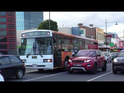 Transdev leased buses at Box Hill - Melbourne Transport