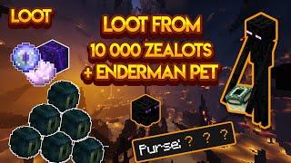 Loot from 10 000 Zealots with Enderman Pet   Hypixel Skyblock