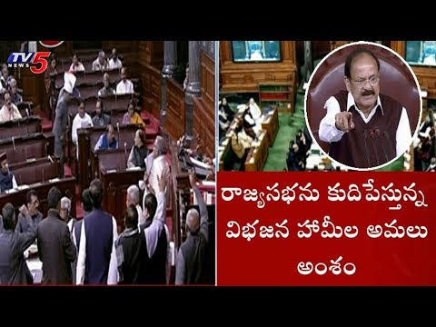 AP MP's Protest In Rajya Sabha Over Injustice To Andhra Pradesh | TV5 News