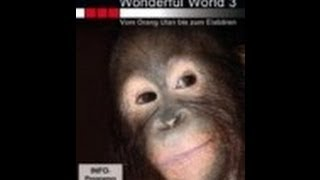 BBC - Wunderbare Welt der Tiere