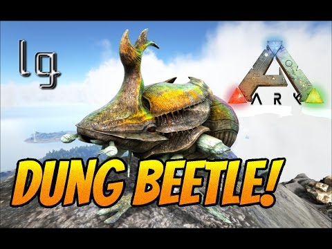 Ark: Survival Evolved -  Dung Beetle How To Tame & Convert Poop/ Feces