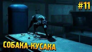 Анабиоз: Сон разума Прохождение ★ Собака-кусака ★ #11
