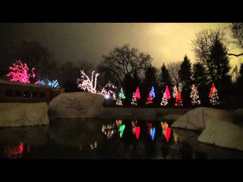 Christmas tree musical light show Chicago December 1, 2012