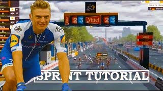 Pro Cycling Manager 2017 Pc Gameplay Sprint win
