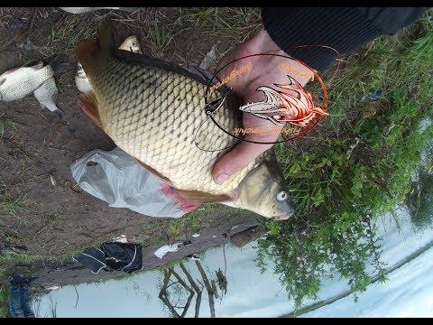 Охота и рыбалка магазин в минске