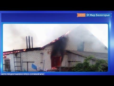 Мужчина и ребенок погибли при пожаре в Вейделевском районе