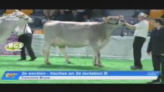 EG2017 - Brune - Vaches en 2e lactation B