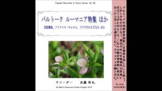 PapalinのCD 第3弾 第6作です。 http://studio-papalin.com/?pid=8980...