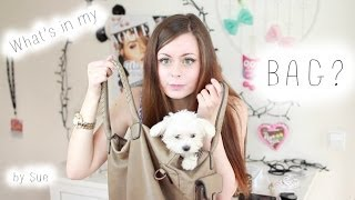 ♡ What's in my bag ♡ Thumbnail