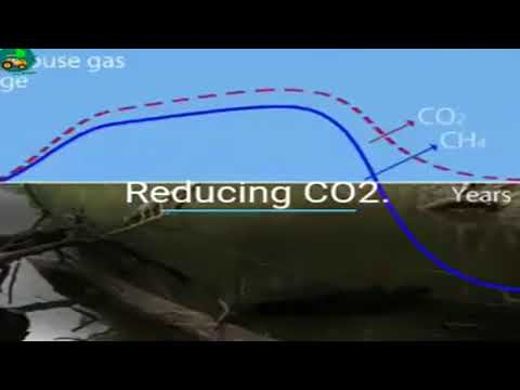 Portable FreeGreen Energy from Organic wastes