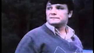 Comercial Tavria 1988