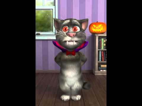 Mèo tallking tom chửi ngày howleween cực vui