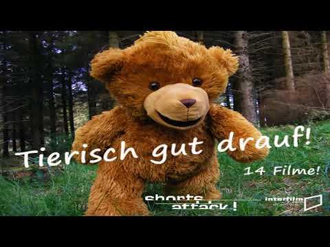 EIN WASCHBÄR LERNT FLIEGEN xD #002 WASCHBÄREN Beobachtung - Cмотреть видео онлайн с youtube, скачать бесплатно с ютуба