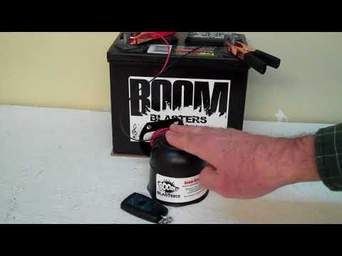 Duck Mallard Hail Call Sounds Musical Car Horn Wireless