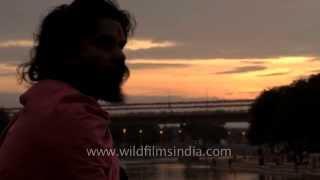 Dishevelled hair and faraway look - Hindu holy man on banks of Godavari river at Nasik Kumbh