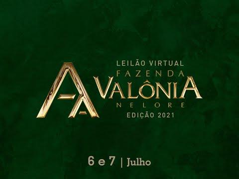 Lote 30   Herança 11 FIV da Valônia   JAA 6346 Copy