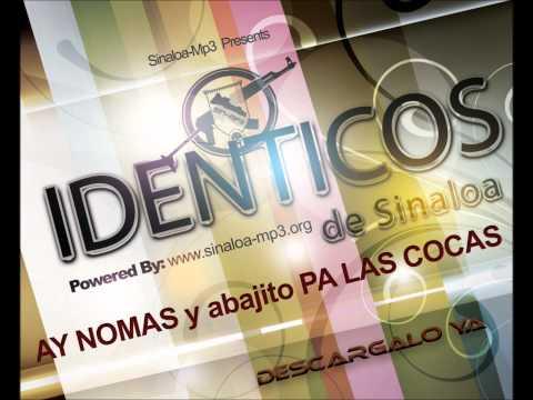 Identicos de Sinaloa - Descargas de R1