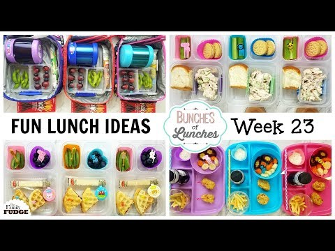 FUN School Lunch Ideas + What they Ate || Bunches of Lunches