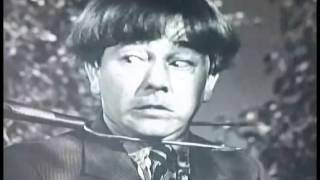 Three Stooges ~ selected scenes 1