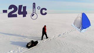 Окунь на мотыля в палатке в сильный мороз на Чудском озере