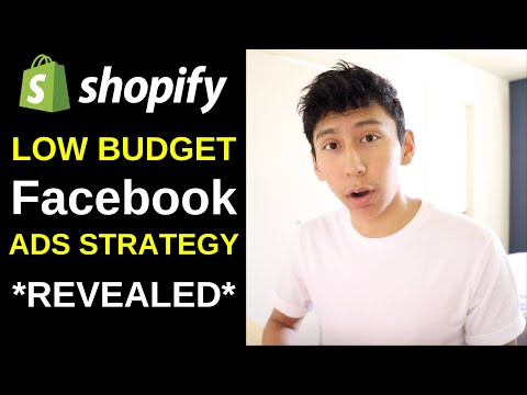New Low Budget FaceBook Ads Strategy For Shopify Dropshipping In 2019 thumbnail